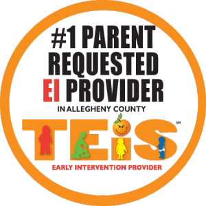 teis #1 allegheny county