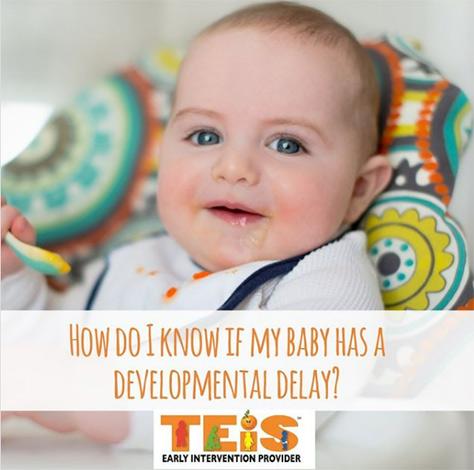 developmental-delay-TEIS