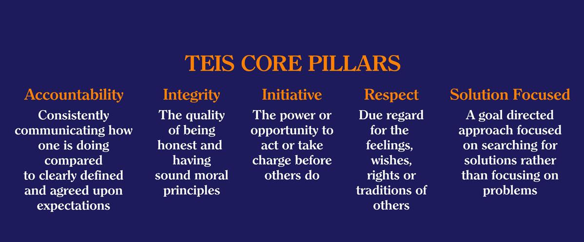 TEIS Core Pillars